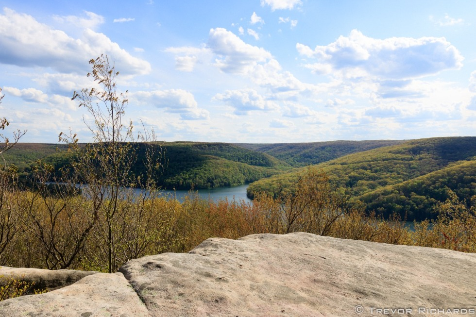 Allegheny National Forest, Rimrock. Photo by Trevor Richards.